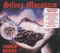 SILVER MOUNTAIN(Sweden) / Shakin' Brains + 1