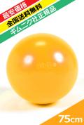 【ギムニク社正規品】ギムニクプラス(GYMNIC PLUS)75cm 黄色【バウンドしても大丈夫】