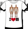 【高品質TシャツにCGイラストをプリント】 解剖学Tシャツ - アイ・ラブ・筋肉 (グッズ)