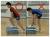 筋力&パワートレーニング(DVD)内容紹介4