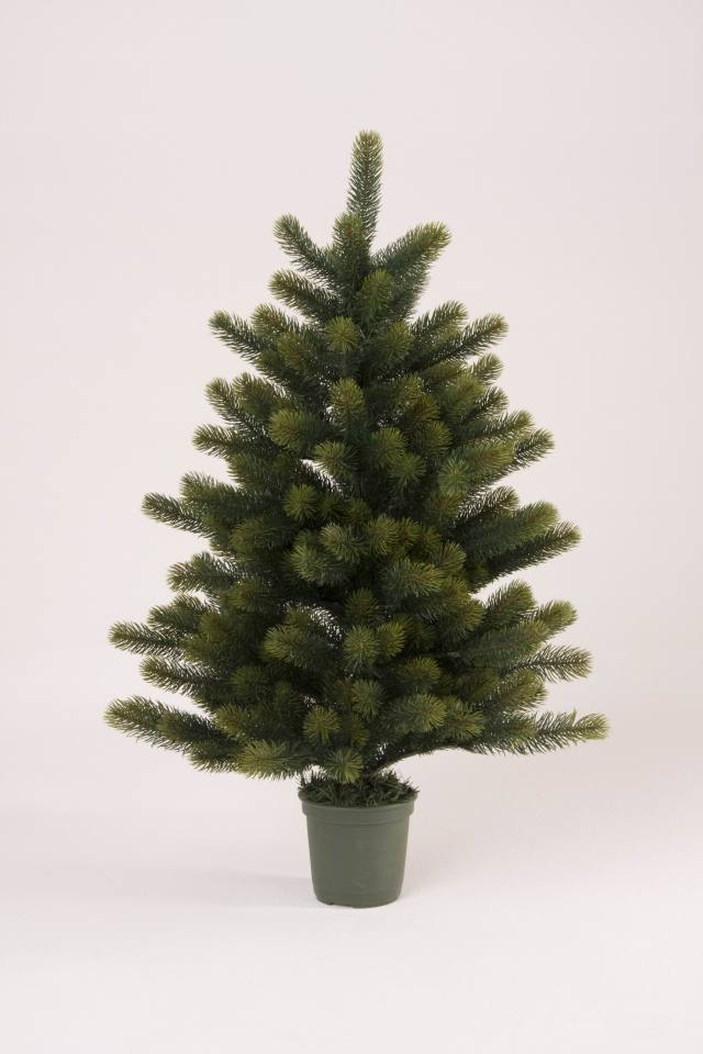 クリスマスツリーの画像 p1_9