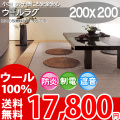 【送料無料】■AS 新毛ウール100%ニューアスポーター快適ラグ♪ 200x200 全6色