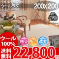 【送料無料】■AS 新毛ウール100%アスプレイス快適ラグ♪ベーシック 200x200 全3色