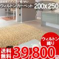 【送料無料】■AS 高級感溢れるデザイン♪ヨーロピアンカーペット (ラグ 200x250) 絨毯●アスグレース全3色