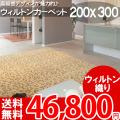 【送料無料】■AS 高級感溢れるデザイン♪ヨーロピアンカーペット (ラグ 200x300) 絨毯●アスグレース全3色