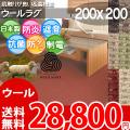 ■高級ウール100%♪防ダニ抗菌エコカーペット (ラグ200×200)ソフトな肌触りが魅力な絨毯●カラー全6色・日本製