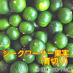 【送料無料】沖縄県産シークワーサー果実(青切り)・期間限定販売!-<約500g/約20個~30個前後>