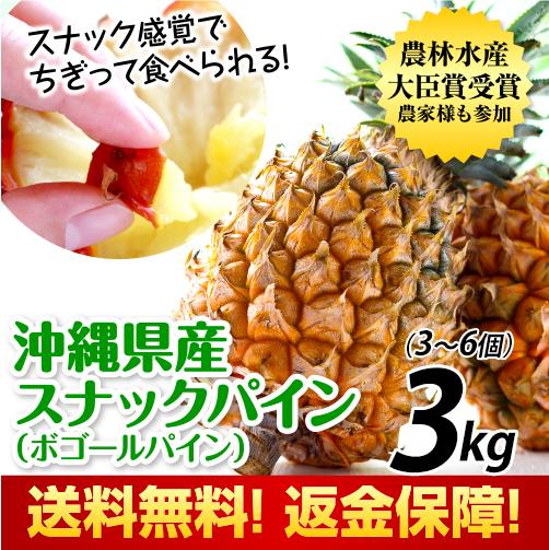 沖縄県産スナックパイン3kg
