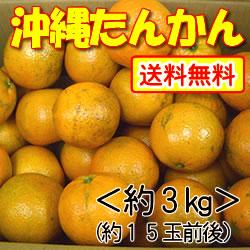 【送料無料】沖縄山原(やんばる)産・平川さんのこだわりたんかん約3kg