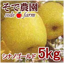 シナノゴールド 5kg [そで農園]