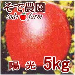 陽光 5kg [そで農園]