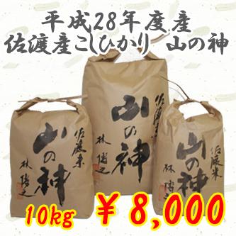 貴重なお米入荷しました!平成28年度産 佐渡産コシヒカリ 【山の神】 10kg 1万円以上で送料無料!