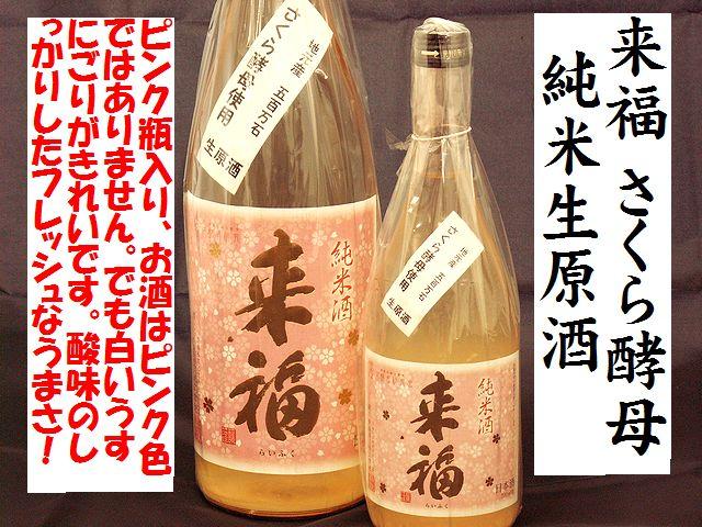 来福 純米生原酒 さくらの花酵母 日本酒通販 日本酒ショップくるみや