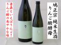 鳩正宗HATOMASAMUNE りんご酸酵母仕込み 純米生酒 十和田の地酒通販 日本酒ショップくるみや