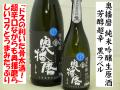奥播磨 芳醇超辛 純米吟醸生原酒 黒ラベル 日本酒ショップくるみや