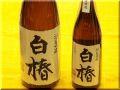 洞窟貯蔵芋焼酎 白椿 日本酒ショップくるみや