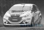 予約品 2017年頃 ミニカー ホワイトボックス Whitebox 1/43 WBR022 プジョー 208 R2 2013年 Rally Condroz(ベルギー) #29 K.Abbring/P.Vyncke 4907981648015
