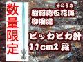 限定販売! ピッカピカ11cm2段カンナ 徳用5本パック 大型ヤリイカ用 イカ釣りプラ角  ヤマシタ