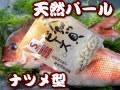 天然パール ナツメ型   カツオ・シマアジ・マダイ・ワラサ
