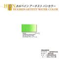 【ホルベイン アーチスト パンカラー】カドミウムグリーンペール(545)