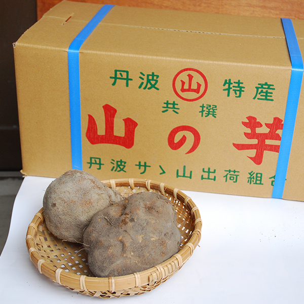 山の芋 霧芋