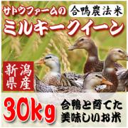 【28年新潟産】合鴨農法ミルキークイーン30Kg(5kg×6)【生産直売】【送料無料】