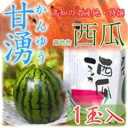高知県産・特撰高級西瓜(スイカ)・甘湧(かんゆう)・露地物・秀品・2Lサイズ・1個