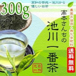 【土佐茶】高知の池川茶・農薬不使用・一番茶緑茶300g【送料無料】