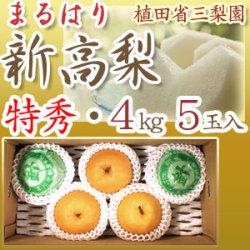 新高梨(高知県針木産) 特秀 最高級贈答用 4kg 5玉入