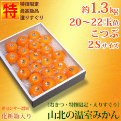 山北温室みかん・特撰秀品・約1.3kg・20〜22玉・小粒・2Sサイズ