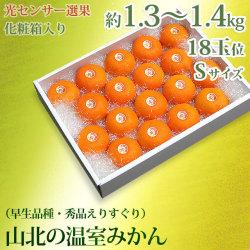 山北の温室みかん(早生・赤秀品・ご贈答用)約1.3〜1.4kg化粧箱入り・Sサイズ