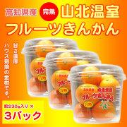 山北温室フルーツきんかん(ハウス栽培品)約230g×3パックセット