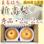 【送料無料】新高梨(高知県針木産) 植田省三梨園 秀品 贈答用 2kg2玉入