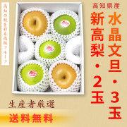 新高梨(高知県産)2玉+水晶文旦3玉セット