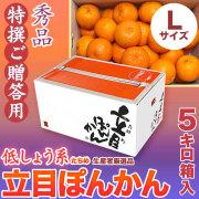【送料無料】立目(たちめ)ぽんかん(低しょう系)特撰ご贈答用・5kg箱・Lサイズ