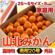 山北みかん・南柑20号・家庭用・5kg