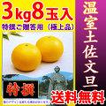 温室土佐文旦(ハウス栽培品)・特撰ご贈答用(極上品)・3kg・8玉入【送料無料】