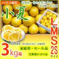 みんなの土佐小夏・家庭用・セール品・大箱(3kg)・2S、S、M、Lサイズ・高知県産・ハウス栽培の小夏