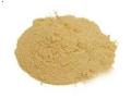 shatavari, シャタバリ, シャタバリパウダー, shatavari powder, オーガニック シャタバリ,organic shatavari