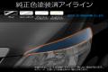TOYOTA ALPHARD (20W/25W)/アイライン純正色塗装済み