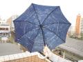 全天星座傘