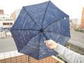 全天星座折り畳み傘