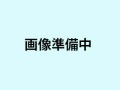 ショックコード 8mm ☆34033