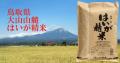 大山山麓米 はいが精米5kg