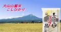 鳥取県産 大山山麓米 こしひかり