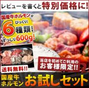 ◆送料無料!!◆レビューを書いて特別価格に!!国産牛ホルモンだけを厳選した鳥静お試しホルモンセット!!