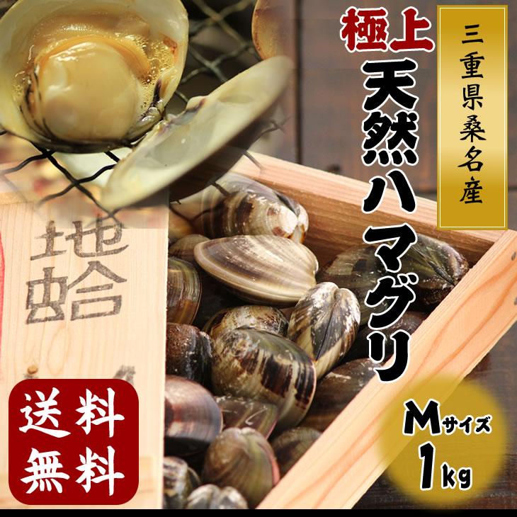 最高級の三重県桑名産天然はまぐり(地蛤) 1kg