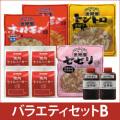 173-40308 金剛園 焼肉バラエティセットB