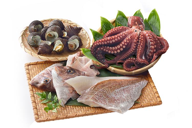 御食国(みけつくに)淡路島産 真鯛とプリプリ食感の煮たことさざえセット