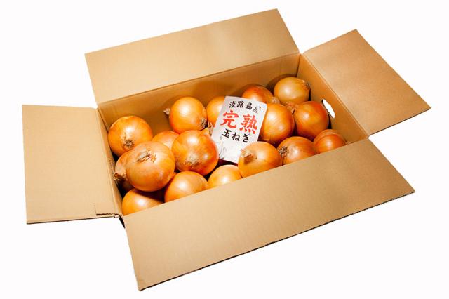 【3月末まで】淡路島産完熟玉ねぎ 10kg